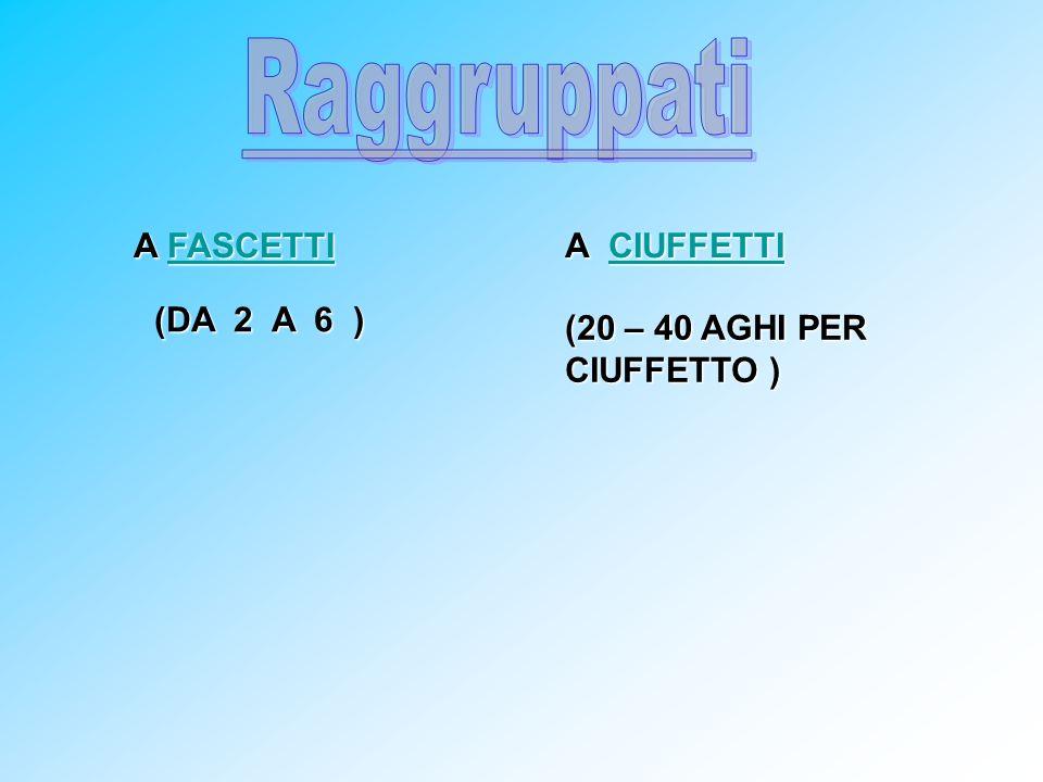 A FASCETTI FASCETTI A CIUFFETTI CIUFFETTI (DA 2 A 6 ) (20 – 40 AGHI PER CIUFFETTO )