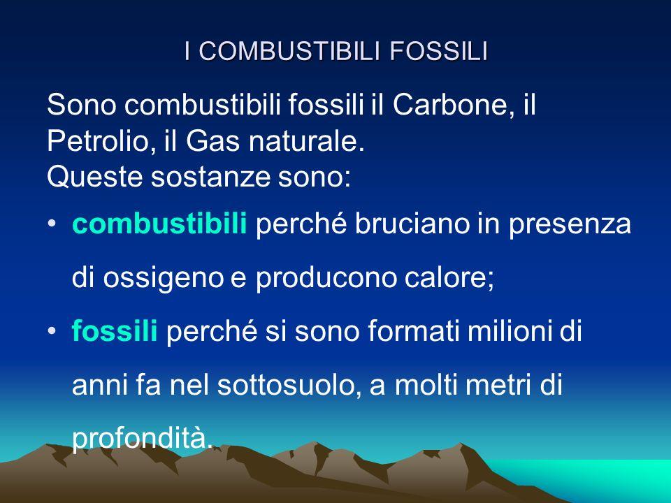 I COMBUSTIBILI FOSSILI Sono combustibili fossili il Carbone, il Petrolio, il Gas naturale. Queste sostanze sono: combustibili perché bruciano in prese