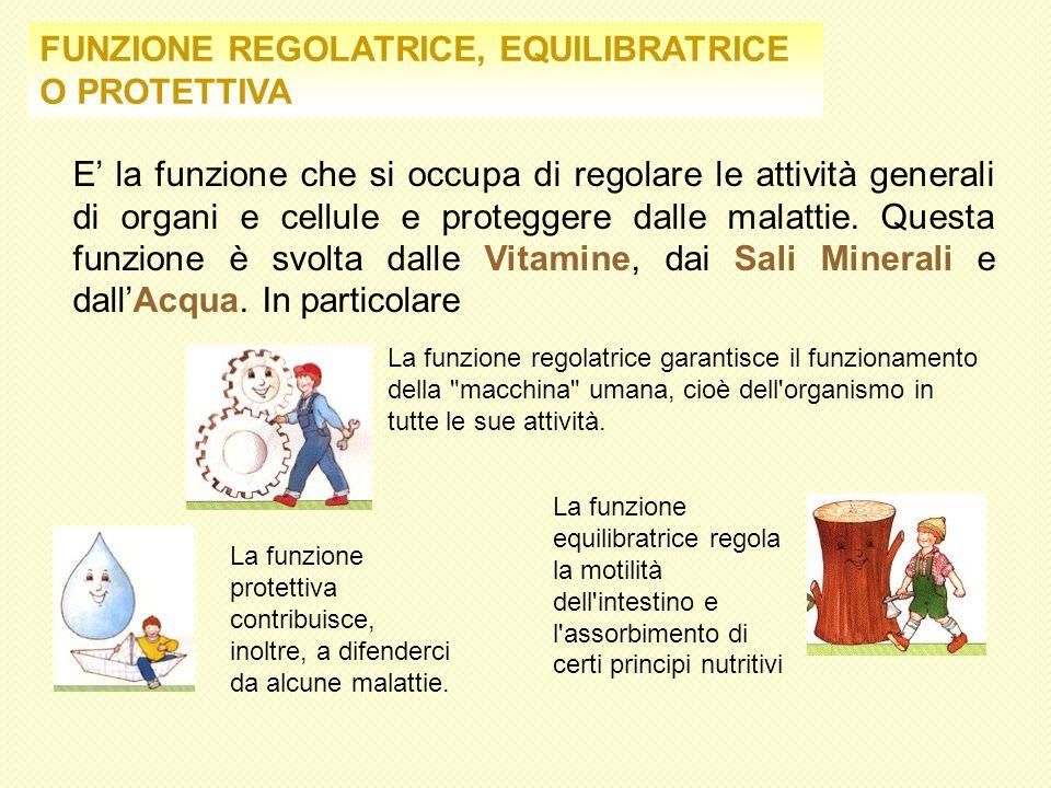FUNZIONE REGOLATRICE, EQUILIBRATRICE O PROTETTIVA E la funzione che si occupa di regolare le attività generali di organi e cellule e proteggere dalle
