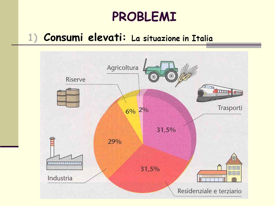 PROBLEMI 2) Disuguaglianza energetica I paesi ricchi con il 25% della popolazione consumano il 75% dellenergia che si produce al mondo.