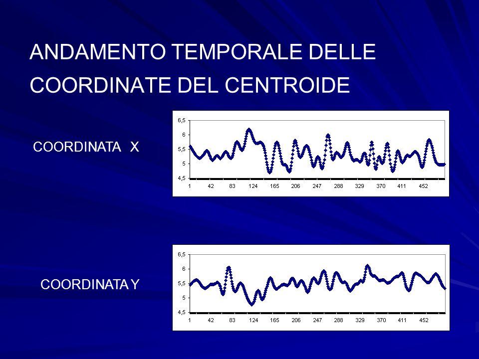 ANDAMENTO TEMPORALE DELLE COORDINATE DEL CENTROIDE COORDINATA X COORDINATA Y