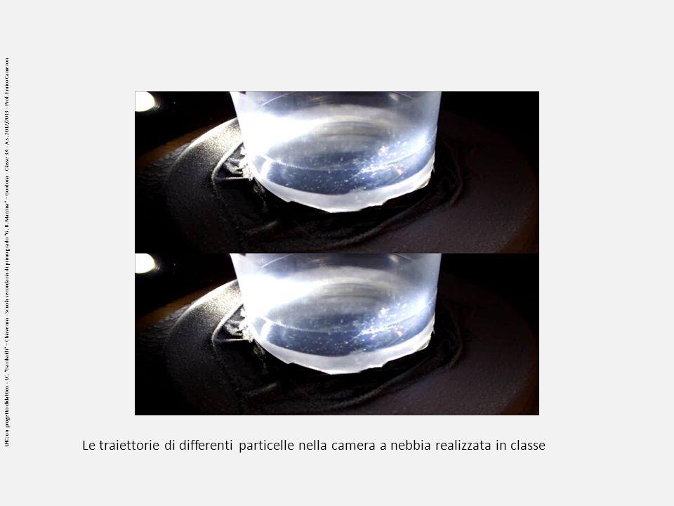 Le traiettorie di differenti particelle nella camera a nebbia realizzata in classe