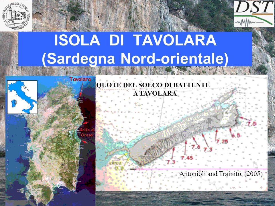 ISOLA DI TAVOLARA (Sardegna Nord-orientale) QUOTE DEL SOLCO DI BATTENTE A TAVOLARA Antonioli and Trainito, (2005)
