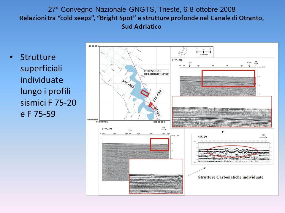 Strutture superficiali individuate lungo i profili sismici F 75-20 e F 75-59