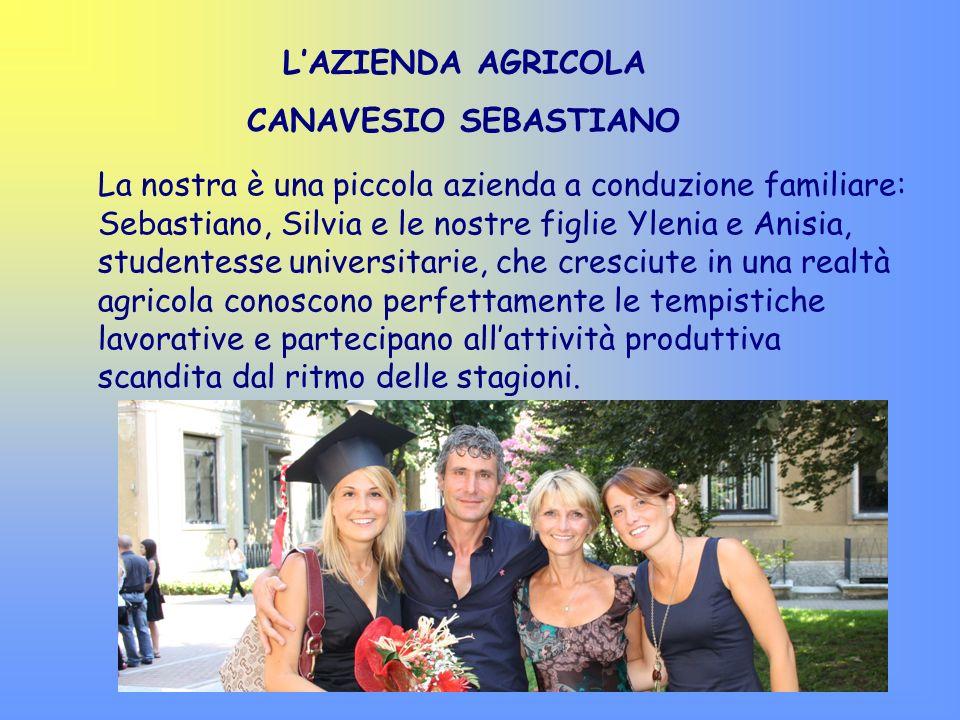 La nostra è una piccola azienda a conduzione familiare: Sebastiano, Silvia e le nostre figlie Ylenia e Anisia, studentesse universitarie, che cresciut
