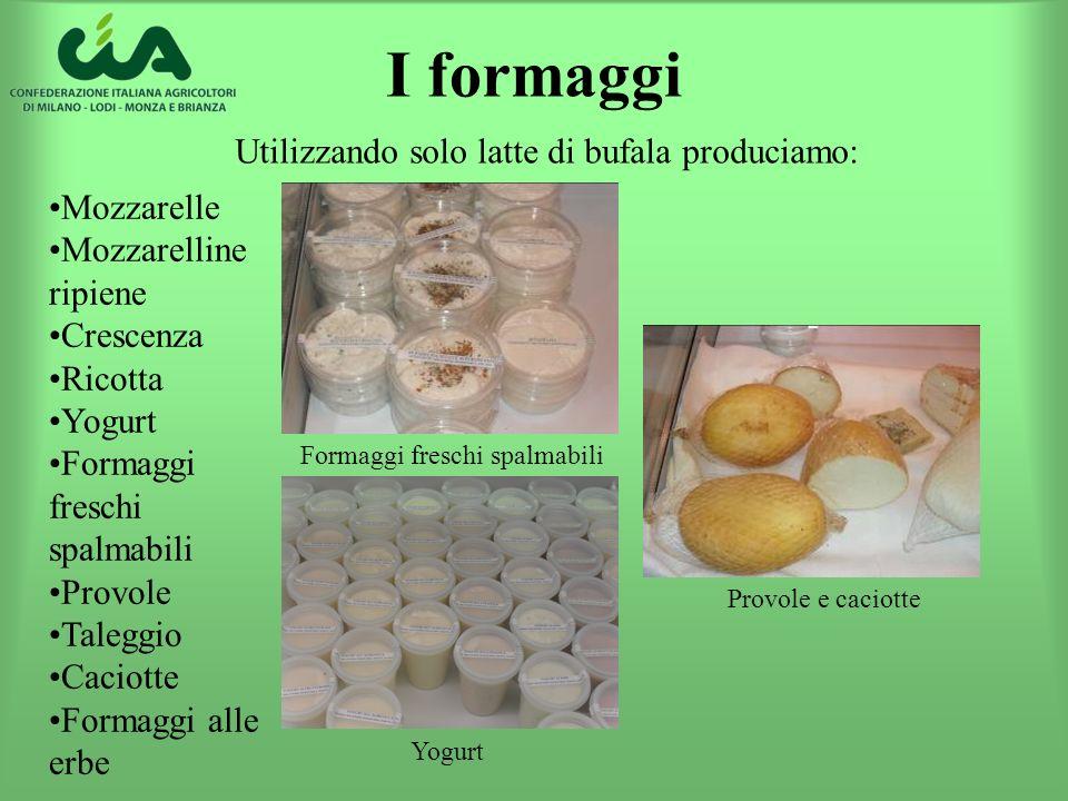 I formaggi Mozzarelle Mozzarelline ripiene Crescenza Ricotta Yogurt Formaggi freschi spalmabili Provole Taleggio Caciotte Formaggi alle erbe Utilizzan