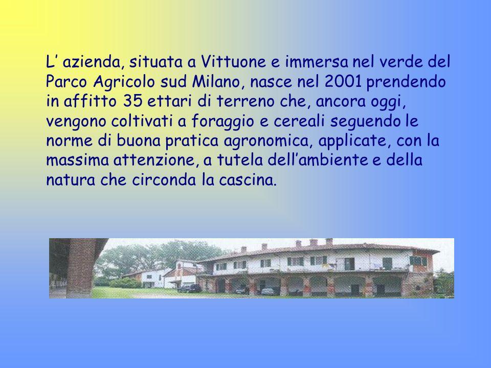 L azienda, situata a Vittuone e immersa nel verde del Parco Agricolo sud Milano, nasce nel 2001 prendendo in affitto 35 ettari di terreno che, ancora