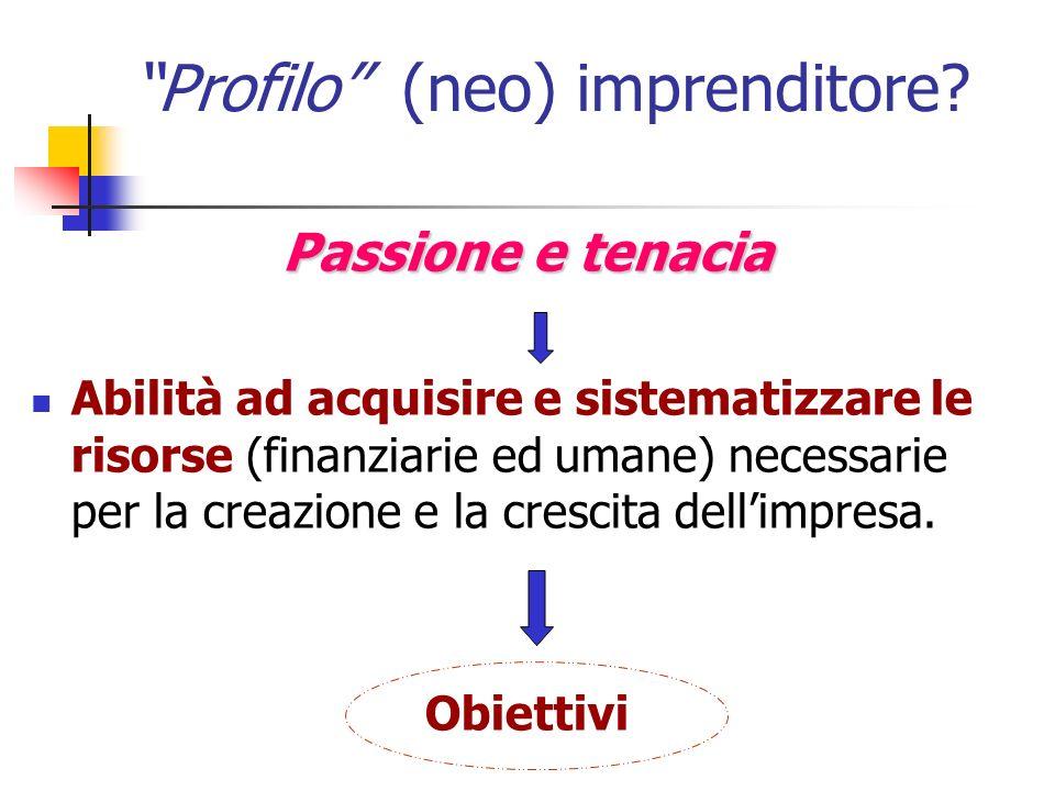 Profilo (neo) imprenditore? Passione e tenacia Abilità ad acquisire e sistematizzare le risorse (finanziarie ed umane) necessarie per la creazione e l