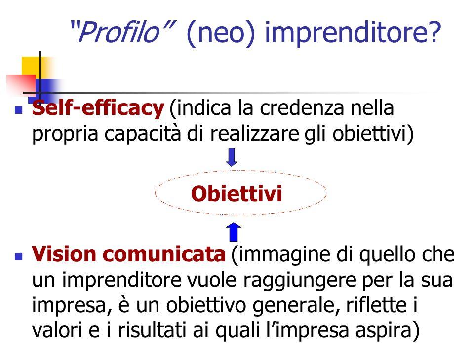 Profilo (neo) imprenditore? Self-efficacy (indica la credenza nella propria capacità di realizzare gli obiettivi) Obiettivi Vision comunicata (immagin