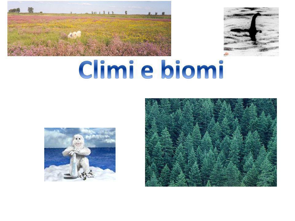 Clima continentale freddo Zona settentrionale dellEuropa Temperature -10°/20° Precipitazioni scarse in inverno (a causa del freddo) e concentrate in estate Manto nevoso Biomi: foresta boreale di conifere, più a sud querce, betulle e faggi