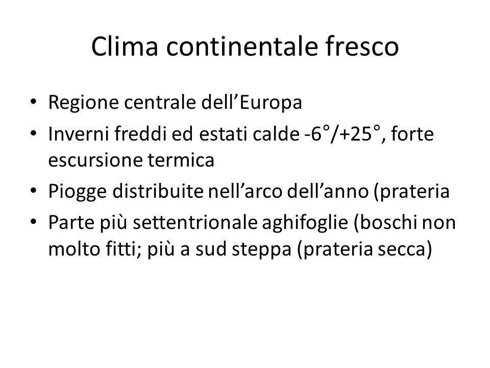 Clima continentale fresco Regione centrale dellEuropa Inverni freddi ed estati calde -6°/+25°, forte escursione termica Piogge distribuite nellarco de