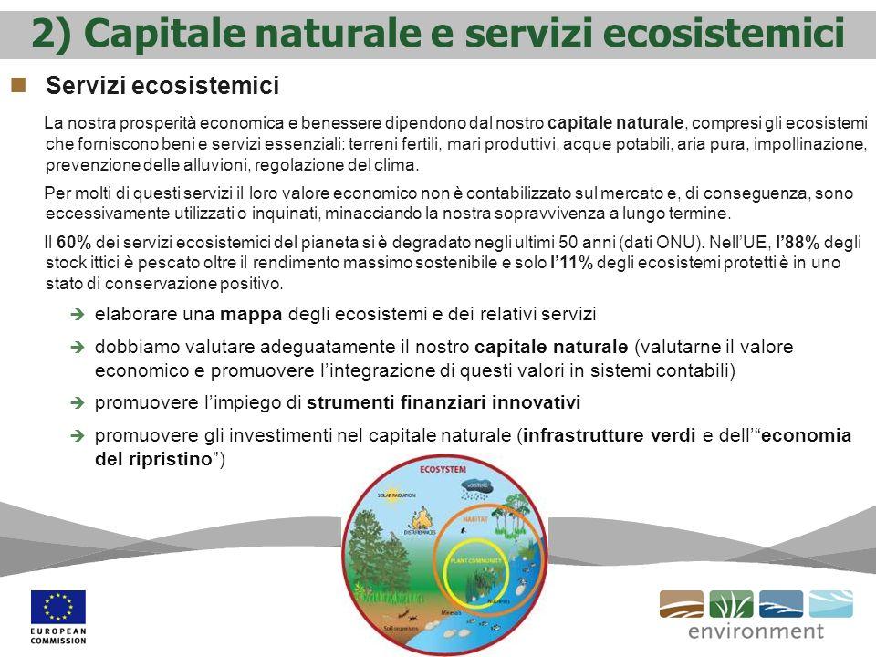 2) Capitale naturale e servizi ecosistemici Servizi ecosistemici La nostra prosperità economica e benessere dipendono dal nostro capitale naturale, co