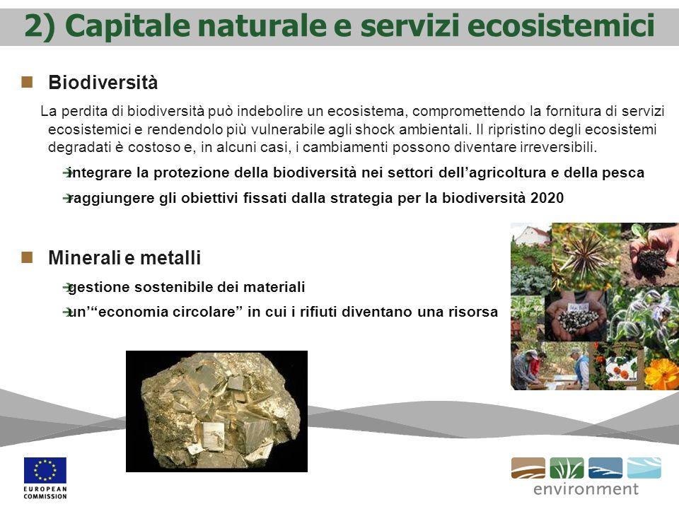 2) Capitale naturale e servizi ecosistemici Biodiversità La perdita di biodiversità può indebolire un ecosistema, compromettendo la fornitura di servizi ecosistemici e rendendolo più vulnerabile agli shock ambientali.