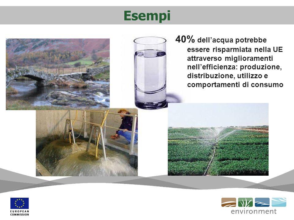 Esempi 40% dellacqua potrebbe essere risparmiata nella UE attraverso miglioramenti nellefficienza: produzione, distribuzione, utilizzo e comportamenti