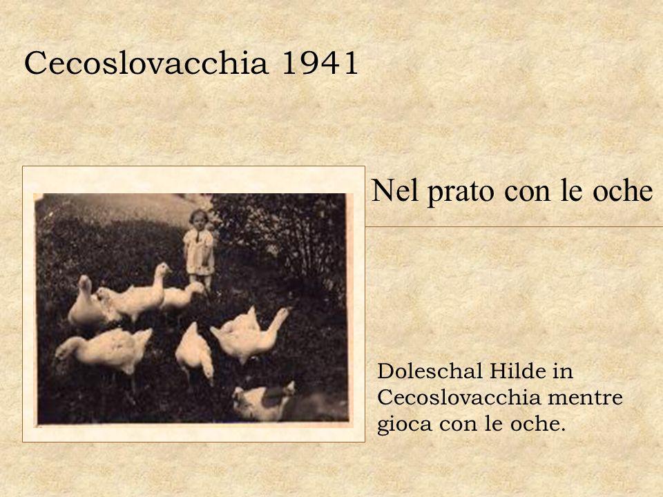 Cecoslovacchia 1941 Nel prato con le oche Doleschal Hilde in Cecoslovacchia mentre gioca con le oche.