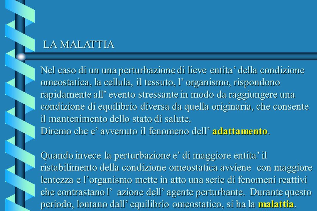 LA MALATTIA Nel caso di un una perturbazione di lieve entita della condizione omeostatica, la cellula, il tessuto, l organismo, rispondono rapidamente