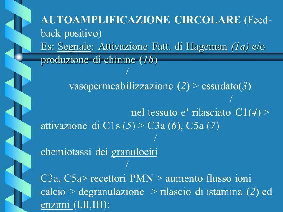 AUTOAMPLIFICAZIONE CIRCOLARE I: (attivatore del plasminogeno) / plasminogeno > plasmina......................