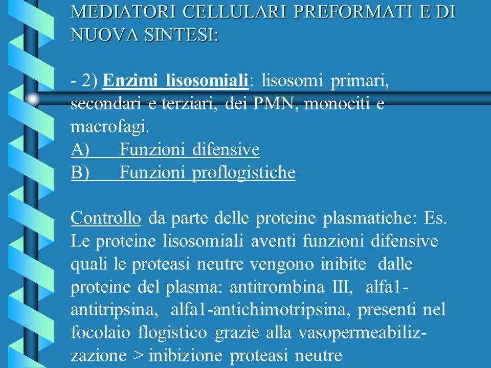MEDIATORI CELLULARI PREFORMATI E DI NUOVA SINTESI: MEDIATORI CELLULARI PREFORMATI E DI NUOVA SINTESI: - 2) Enzimi lisosomiali: lisosomi primari, secon