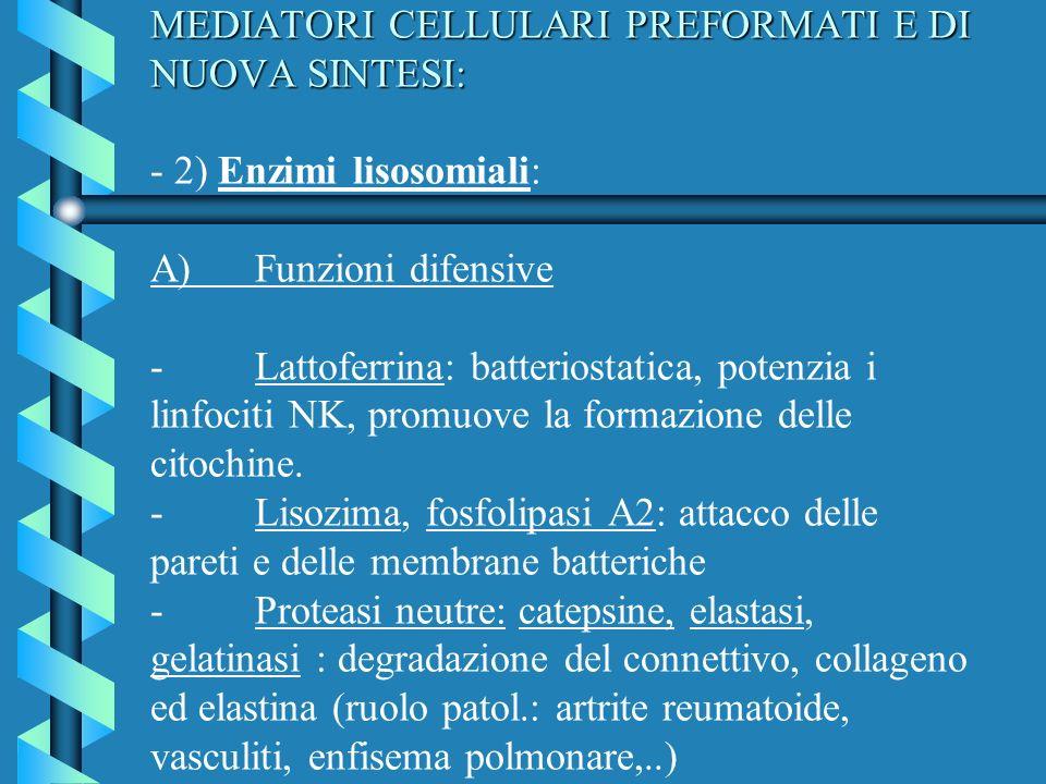MEDIATORI CELLULARI PREFORMATI E DI NUOVA SINTESI: MEDIATORI CELLULARI PREFORMATI E DI NUOVA SINTESI: - 2) Enzimi lisosomiali: A)Funzioni difensive -L