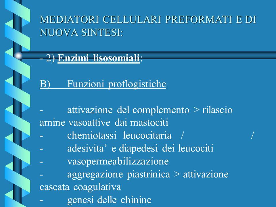 MEDIATORI CELLULARI PREFORMATI E DI NUOVA SINTESI: MEDIATORI CELLULARI PREFORMATI E DI NUOVA SINTESI: - 2) Enzimi lisosomiali: B)Funzioni proflogistic