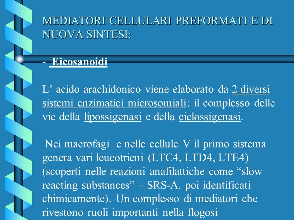 MEDIATORI CELLULARI PREFORMATI E DI NUOVA SINTESI: MEDIATORI CELLULARI PREFORMATI E DI NUOVA SINTESI: - Eicosanoidi L acido arachidonico viene elabora