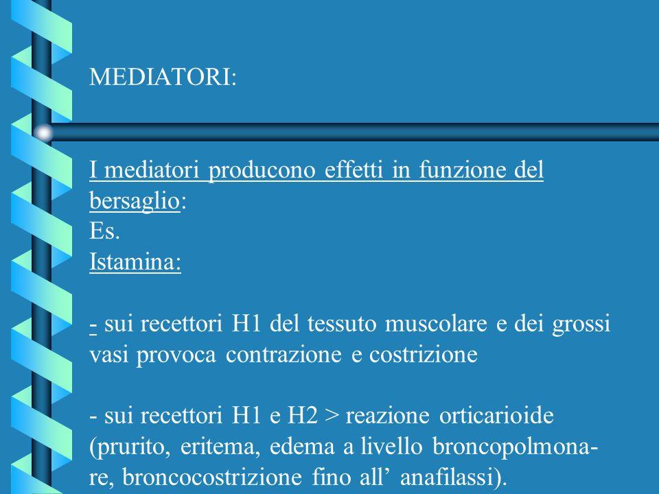 MEDIATORI: I mediatori producono effetti in funzione del bersaglio: Es. Istamina: - sui recettori H1 del tessuto muscolare e dei grossi vasi provoca c
