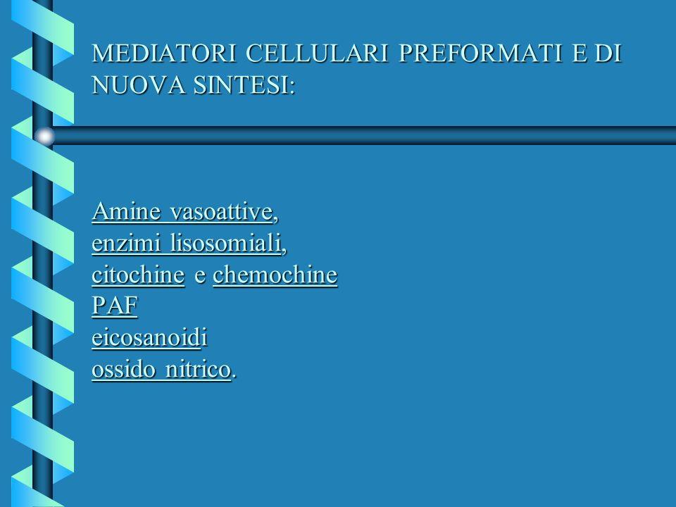 MEDIATORI CELLULARI PREFORMATI E DI NUOVA SINTESI: Ossido nitrico MEDIATORI CELLULARI PREFORMATI E DI NUOVA SINTESI: Ossido nitrico In questi ultimi citotipi svolge vari ruoli: -vasodilatazione venulare - incrementa la permeabilita vascolare -adesivita dei leucociti all endotelio vascolare -nell esplosione respiratoria del neutrofilo e del macrofago, mediando l uccisione di cellule e batteri