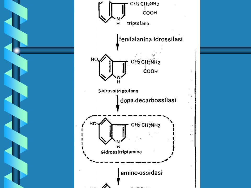 MEDIATORI CELLULARI PREFORMATI E DI NUOVA SINTESI: - Intercrine o chemochine(4 classi): più di 50 distinti polipeptidi a basso p.m., di natura basica e leganti leparina, omologa buona parte della sequenza aminoacidica.