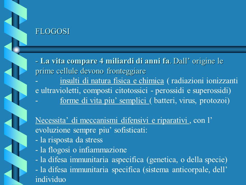FLOGOSI - La vita compare 4 miliardi di anni fa. Dall origine le prime cellule devono fronteggiare FLOGOSI - La vita compare 4 miliardi di anni fa. Da