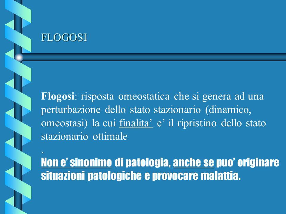 FLOGOSI. FLOGOSI Flogosi: risposta omeostatica che si genera ad una perturbazione dello stato stazionario (dinamico, omeostasi) la cui finalita e il r