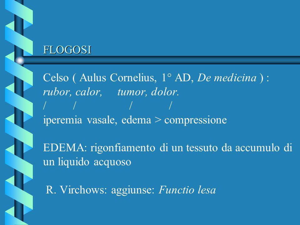 FLOGOSI FLOGOSI Celso ( Aulus Cornelius, 1° AD, De medicina ) : rubor, calor, tumor, dolor. // / / iperemia vasale, edema > compressione EDEMA: rigonf