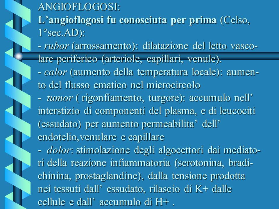 ANGIOFLOGOSI: Langioflogosi fu conosciuta per prima (Celso, 1°sec.AD): - rubor (arrossamento): dilatazione del letto vasco- lare periferico (arteriole