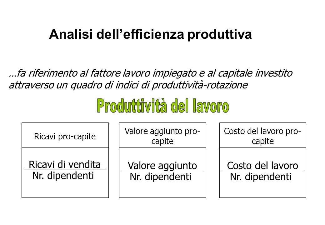 Analisi dellefficienza produttiva …fa riferimento al fattore lavoro impiegato e al capitale investito attraverso un quadro di indici di produttività-r