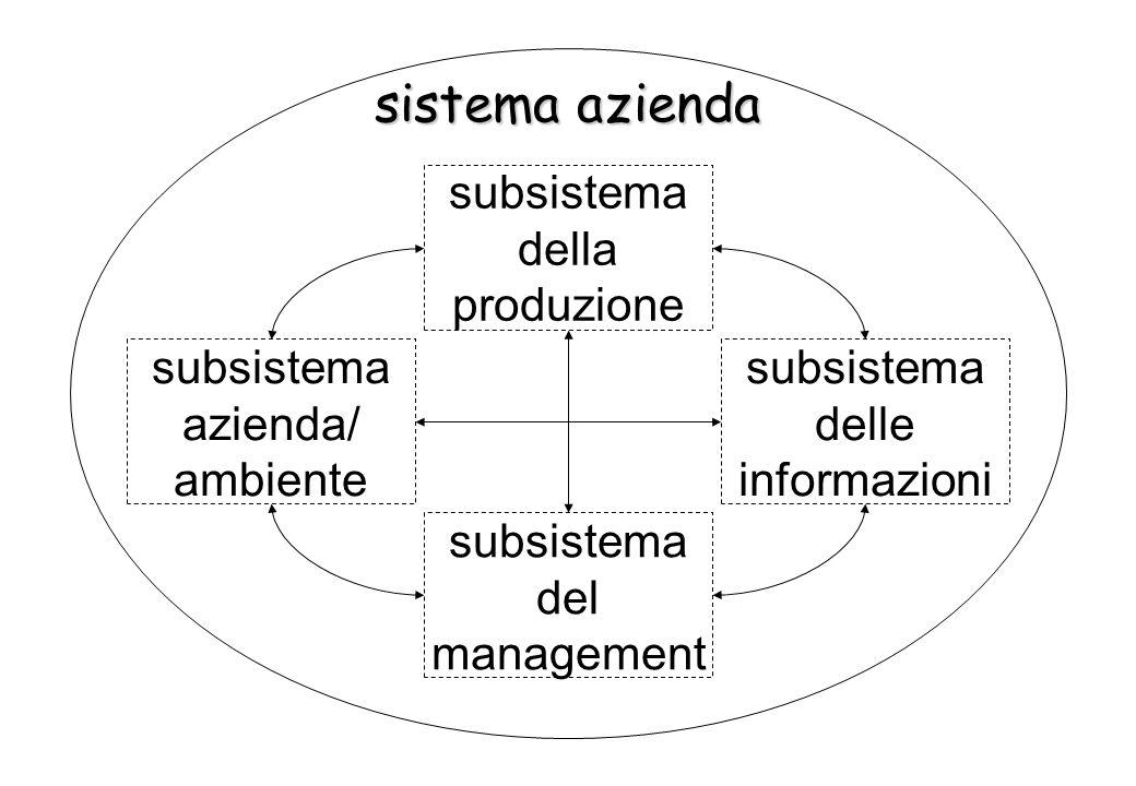 sistema della produzione subsistema lavoro e conoscenze subsistema materiali e servizi di input subsistema impianti e utilità pluriennali subsistema prodotti e servizi di output subsistema denaro