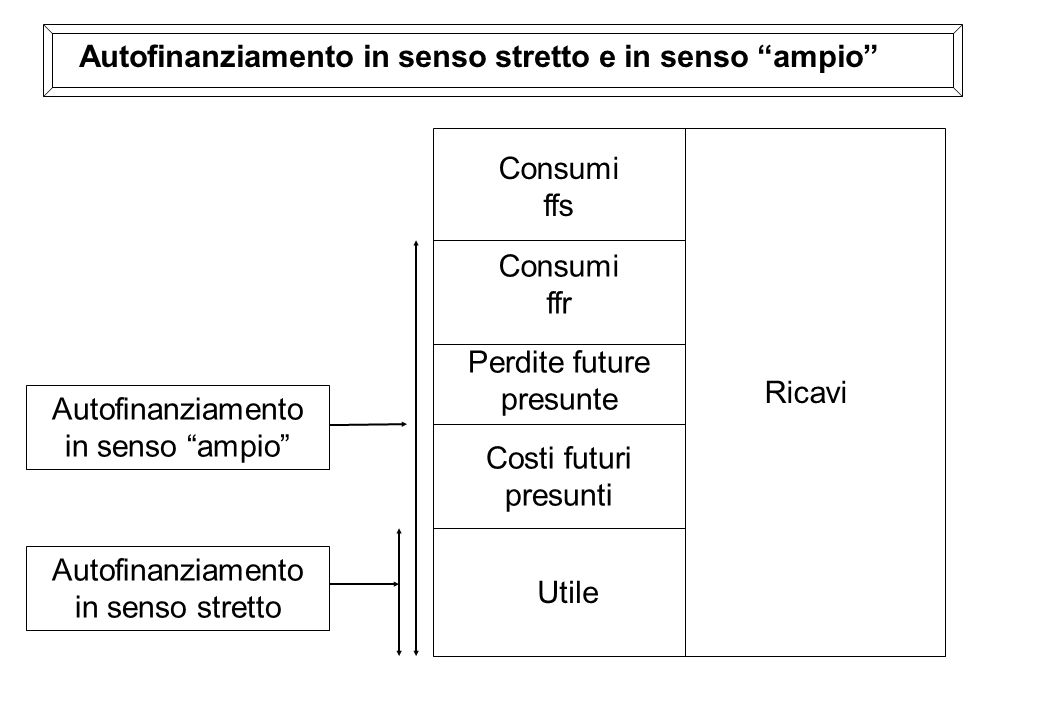 Ricavi Consumi ffs Utile Consumi ffr Perdite future presunte Costi futuri presunti Autofinanziamento in senso ampio Autofinanziamento in senso stretto