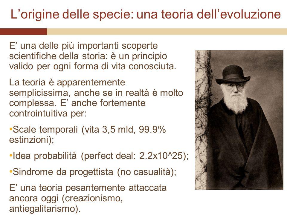Lorigine delle specie: una teoria dellevoluzione E una delle più importanti scoperte scientifiche della storia: è un principio valido per ogni forma d