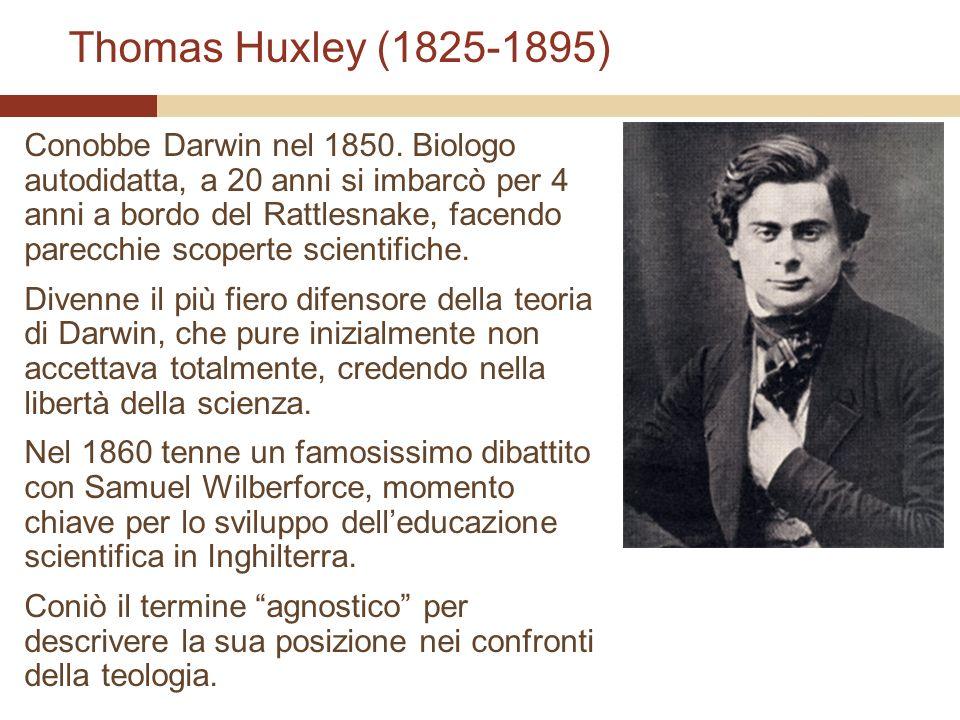 Thomas Huxley (1825-1895) Conobbe Darwin nel 1850. Biologo autodidatta, a 20 anni si imbarcò per 4 anni a bordo del Rattlesnake, facendo parecchie sco