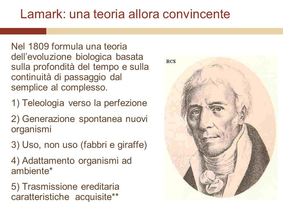 Lamark: una teoria allora convincente Nel 1809 formula una teoria dellevoluzione biologica basata sulla profondità del tempo e sulla continuità di pas
