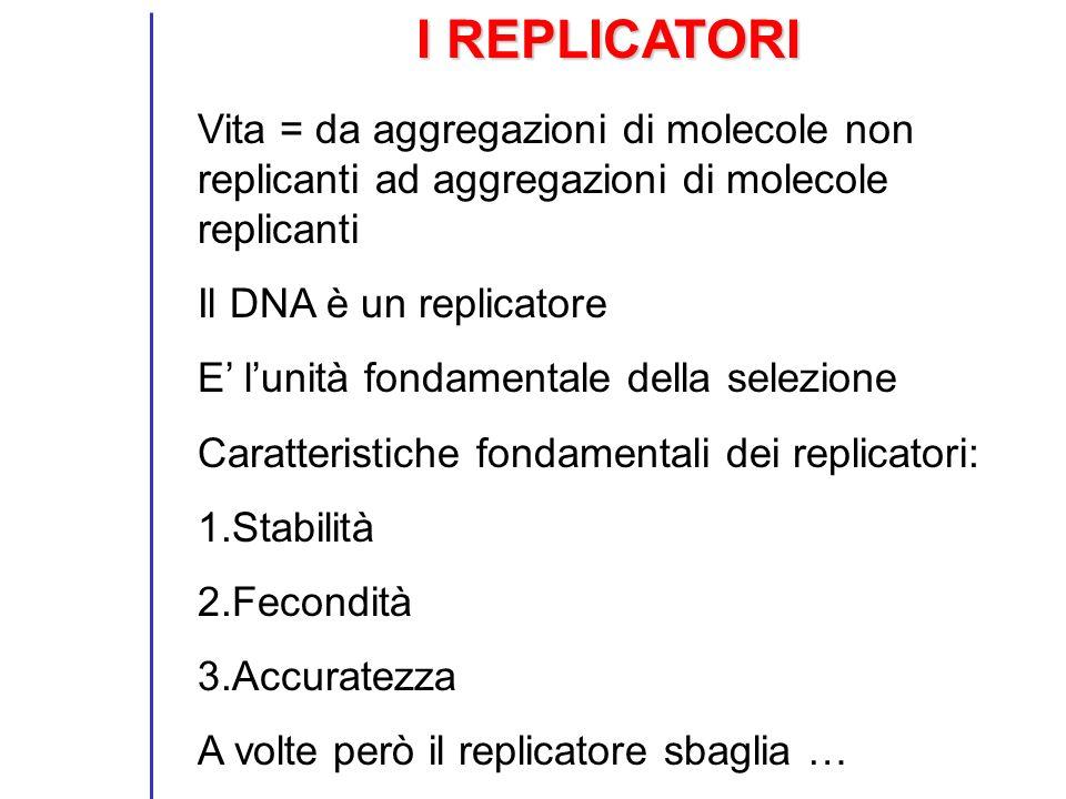 I REPLICATORI Vita = da aggregazioni di molecole non replicanti ad aggregazioni di molecole replicanti Il DNA è un replicatore E lunità fondamentale d