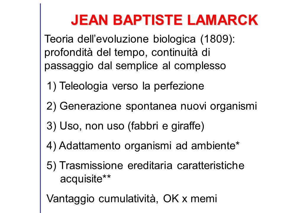 JEAN BAPTISTE LAMARCK 1) Teleologia verso la perfezione 2) Generazione spontanea nuovi organismi 3) Uso, non uso (fabbri e giraffe) 4) Adattamento org
