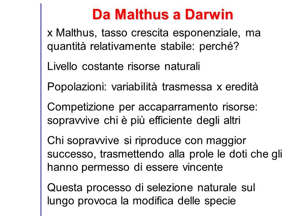 Da Malthus a Darwin x Malthus, tasso crescita esponenziale, ma quantità relativamente stabile: perché? Livello costante risorse naturali Popolazioni: