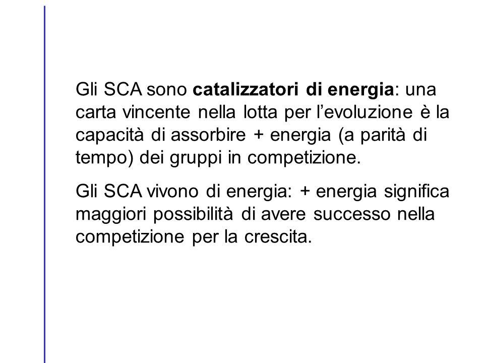 Gli SCA sono catalizzatori di energia: una carta vincente nella lotta per levoluzione è la capacità di assorbire + energia (a parità di tempo) dei gru