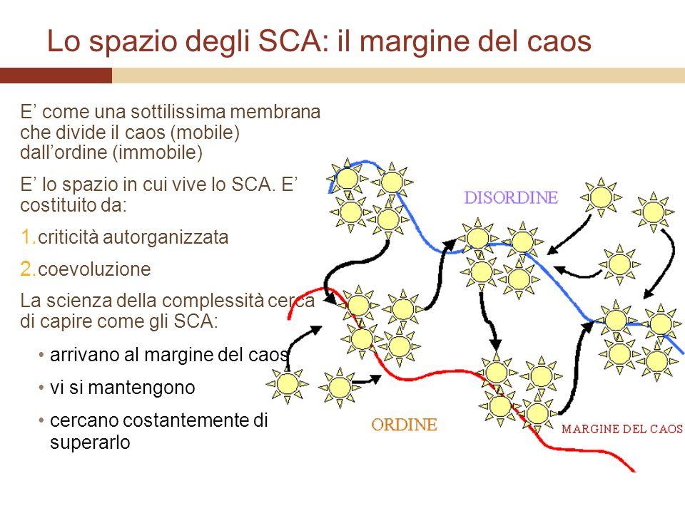 Lo spazio degli SCA: il margine del caos E come una sottilissima membrana che divide il caos (mobile) dallordine (immobile) E lo spazio in cui vive lo