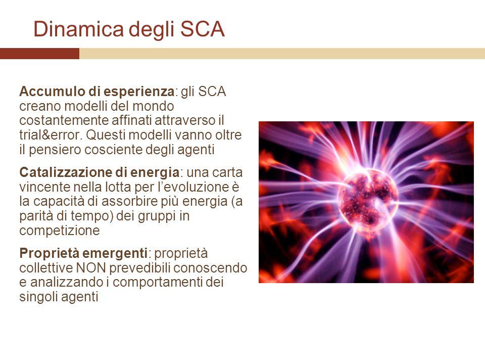 Dinamica degli SCA Accumulo di esperienza: gli SCA creano modelli del mondo costantemente affinati attraverso il trial&error. Questi modelli vanno olt