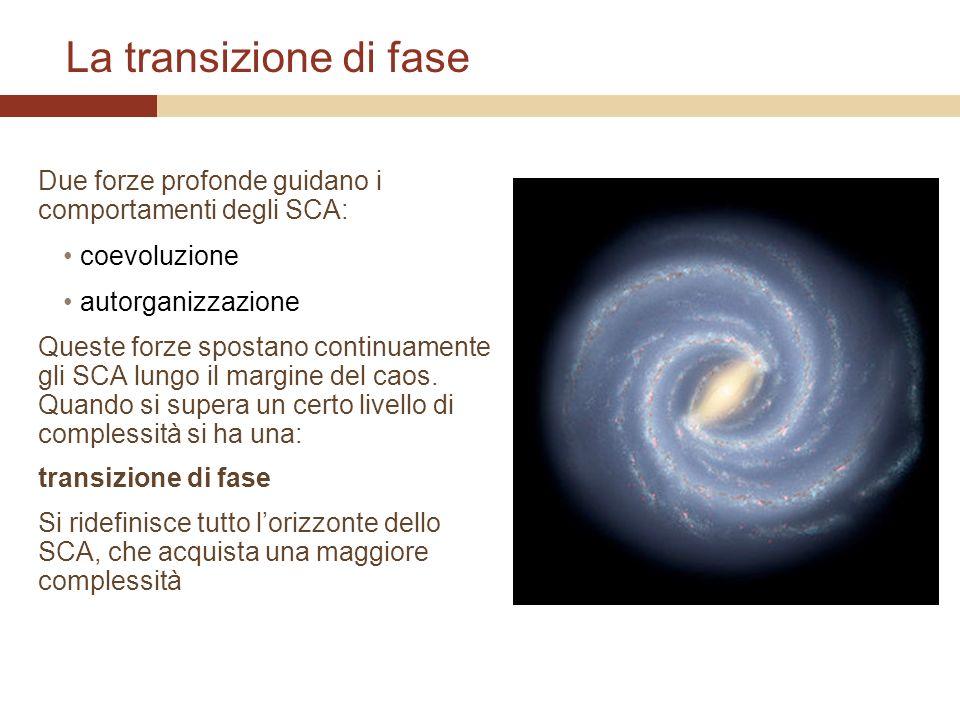 La transizione di fase Due forze profonde guidano i comportamenti degli SCA: coevoluzione autorganizzazione Queste forze spostano continuamente gli SC