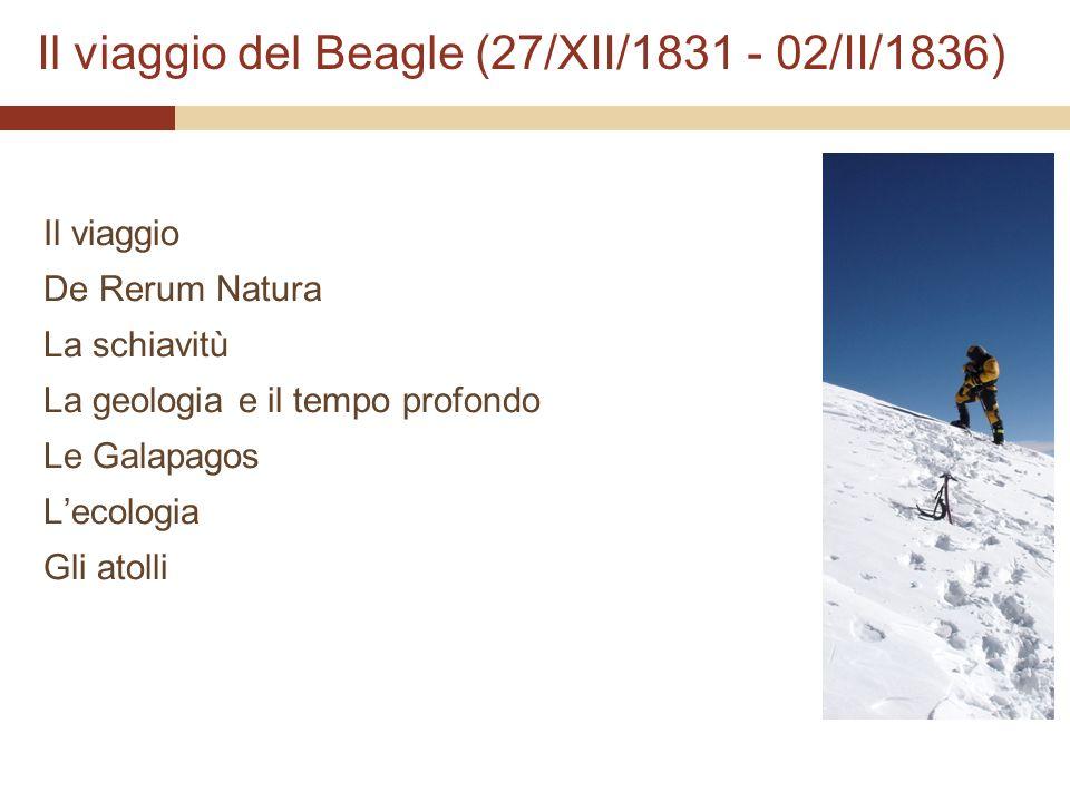 Il viaggio del Beagle (27/XII/1831 - 02/II/1836) Il viaggio De Rerum Natura La schiavitù La geologia e il tempo profondo Le Galapagos Lecologia Gli at