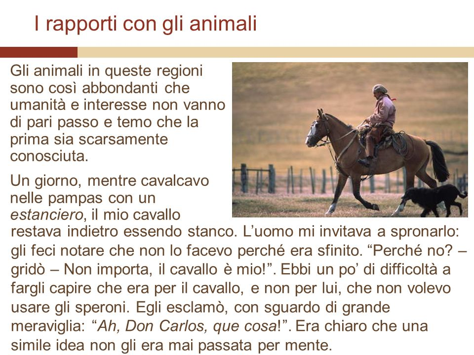 I rapporti con gli animali Gli animali in queste regioni sono così abbondanti che umanità e interesse non vanno di pari passo e temo che la prima sia
