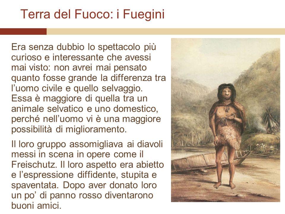 Terra del Fuoco: i Fuegini Era senza dubbio lo spettacolo più curioso e interessante che avessi mai visto: non avrei mai pensato quanto fosse grande l