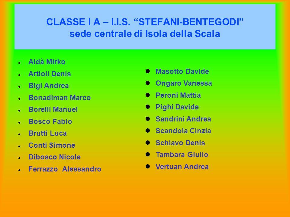 CLASSE I A – I.I.S. STEFANI-BENTEGODI sede centrale di Isola della Scala Aldà Mirko Artioli Denis Bigi Andrea Bonadiman Marco Borelli Manuel Bosco Fab