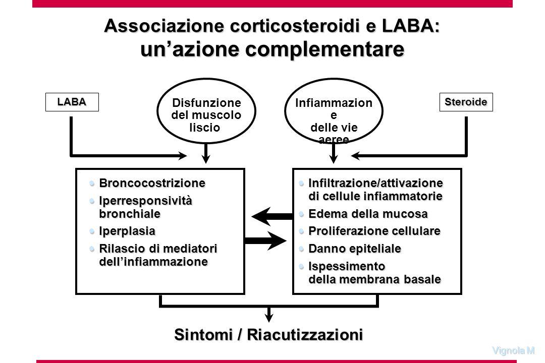 Vignola M Associazione corticosteroidi e LABA: unazione complementare Infiltrazione/attivazione di cellule infiammatorie Infiltrazione/attivazione di